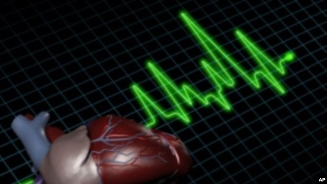 Study Links Mutations to APOC3 Gene with Dramatically Lower Risk for Heart Attack