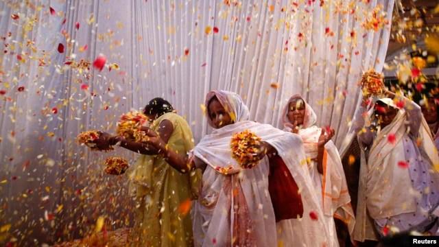 Image result for widows of vrindavan