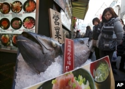 FILE - Visitors look at the heads of bluefin tuna on display in front of a store at Tsukiji fish market in Tokyo, Feb. 19, 2018. The largest bluefin are particularly valuable in Japan, where they are considered a premium sushi and sashimi fish.