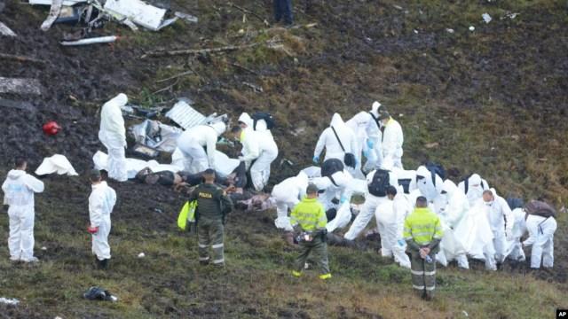 Les secouristes déployés sur le site du crash s'attèlent à retrouver d'éventuels survivants, le 29 novembre 2016.