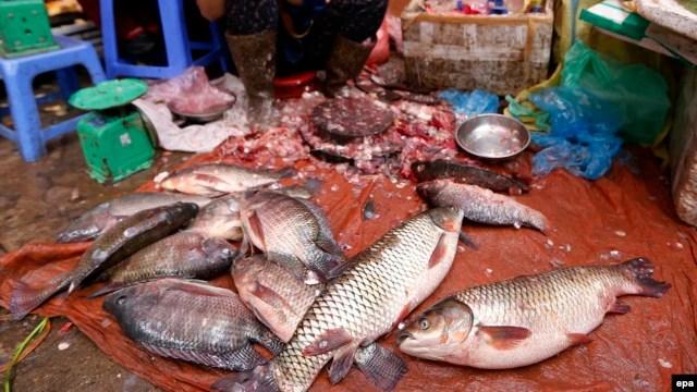 Hội nghề cá Việt Nam khuyến cáo người dân không dùng cá đánh bắt trong thời gian này. Kết quả phân tích mẫu nước tại Lăng Cô cho thấy cá chết do nước biển có chất độc cực mạnh và nước biển ở những khu vực này bị nhiễm kim loại nặng.