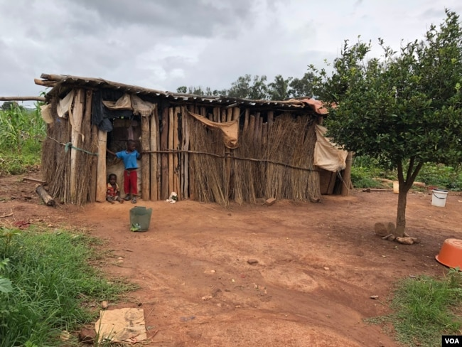 """A common type of """"home"""" is seen at Manzou farm in Mazowe district, Zimbabwe, March 2, 2018, after the government destroyed the original dwellings to make way for former first lady Grace Mugabe's game park in 2015. (S. Mhofu/VOA)"""