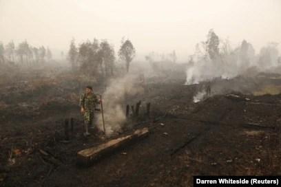 Seorang tentara memeriksa kebakaran lahan gambut di dekat Palangkaraya, Kalimantan Tengah, 28 Oktober 2015. (Foto: REUTERS/Darren Whiteside)