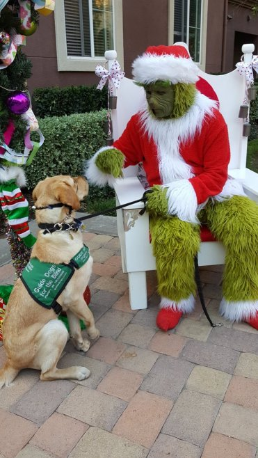 Durango and the Grinch