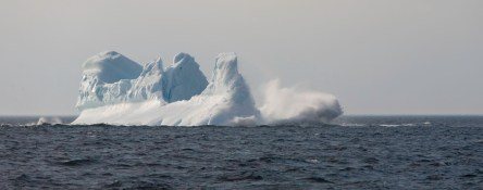 Being in the right place at the right time: Iceberg calving in Notre Dame Bay
