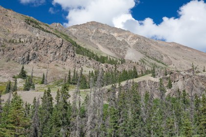 Sheep Creek Trail: Looking up toward Sheep Mountain
