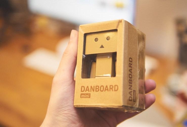 Danboard Mini P5041904