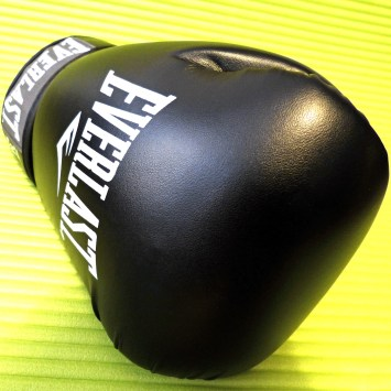 Everlast_Fighter_13