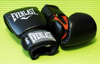 Everlast_Fighter_2