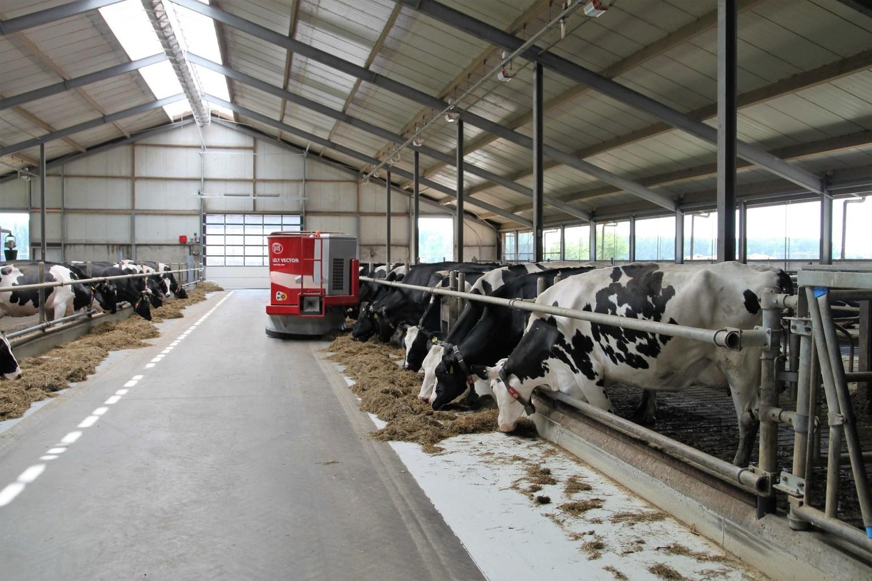 Livestock Mortality Insurance