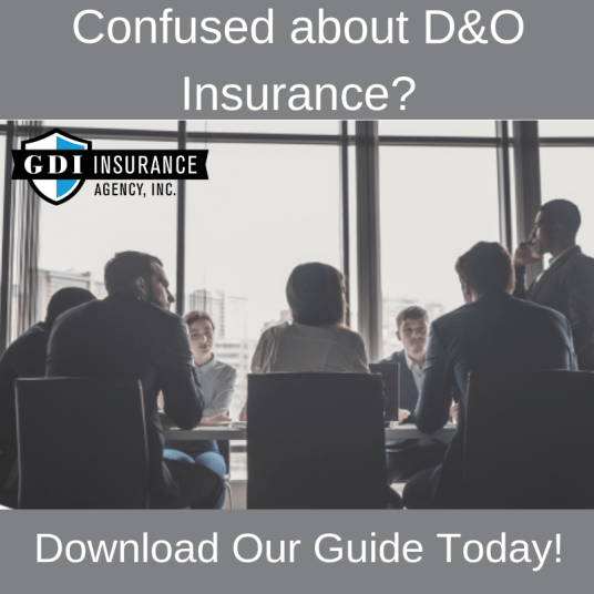 Guide to D&O Insurance
