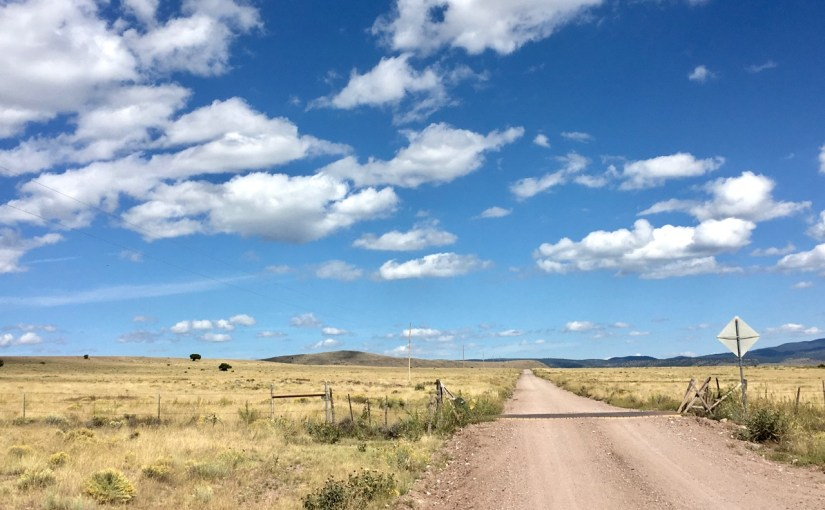 New Mexico's Diversity