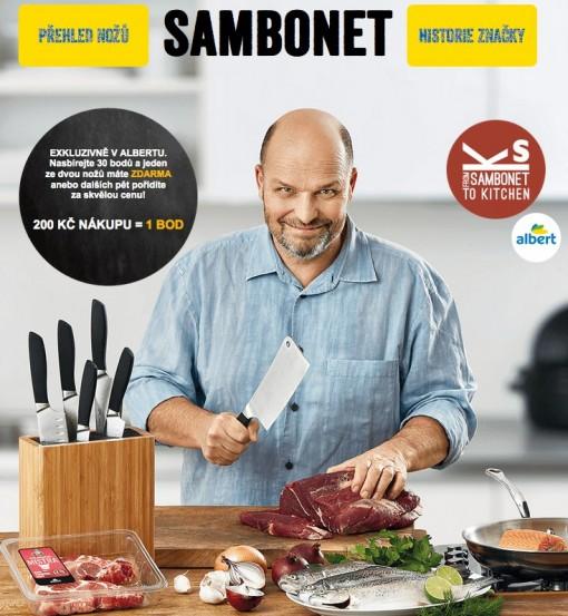 Albert CZ Sambonet cover