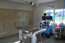 CTVSH Surgery 2
