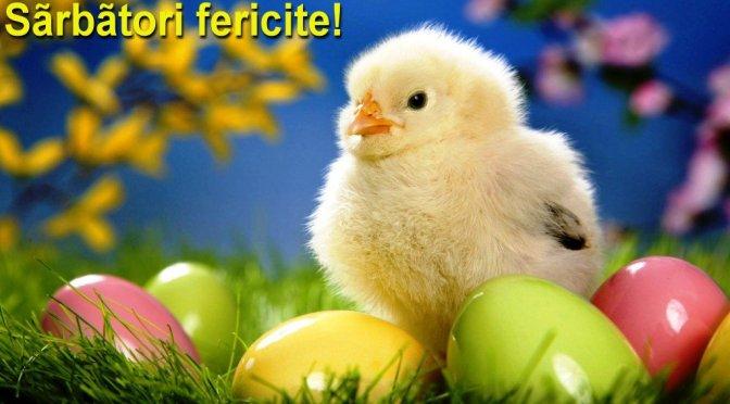Un Paşte liniştit şi îmbelşugat!