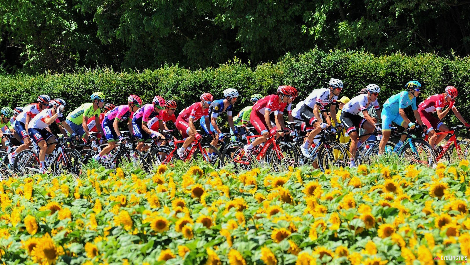 How to Watch the 2017 Tour de France 1
