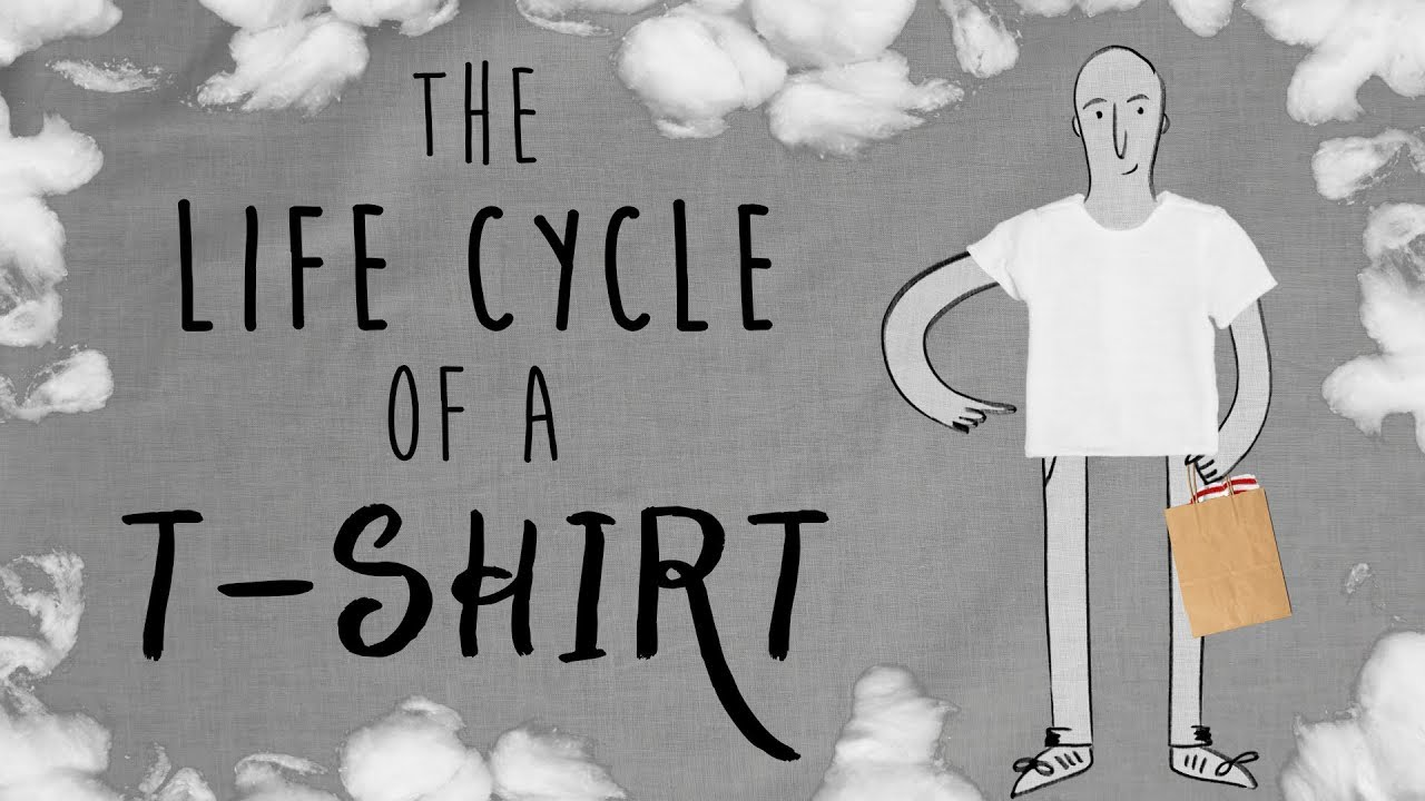 The Life Cycle of a T-shirt 12