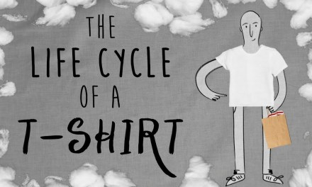 The Life Cycle of a T-shirt