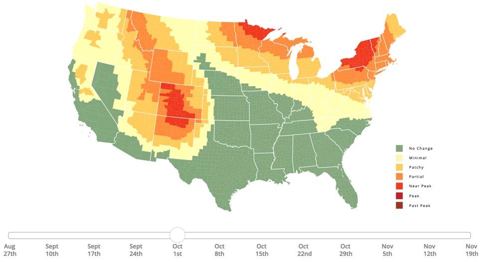 The 2018 Fall Foliage Prediction Map 18