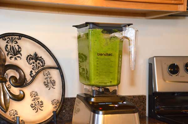 6-BlendTec-Nutrition-Green-Smoothie-GearChase