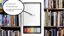 Nooks, Kindles, eBooks, and Pirates, Oh My!