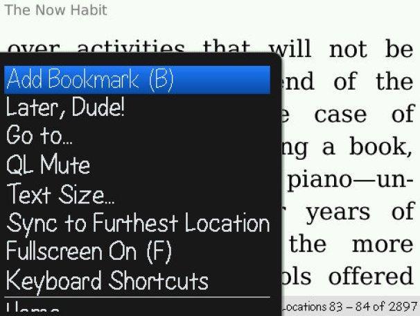 geardiary_blackberry_kindle_addbookmark
