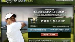 Tiger Woods PGA Tour Golf ... MMO Game?