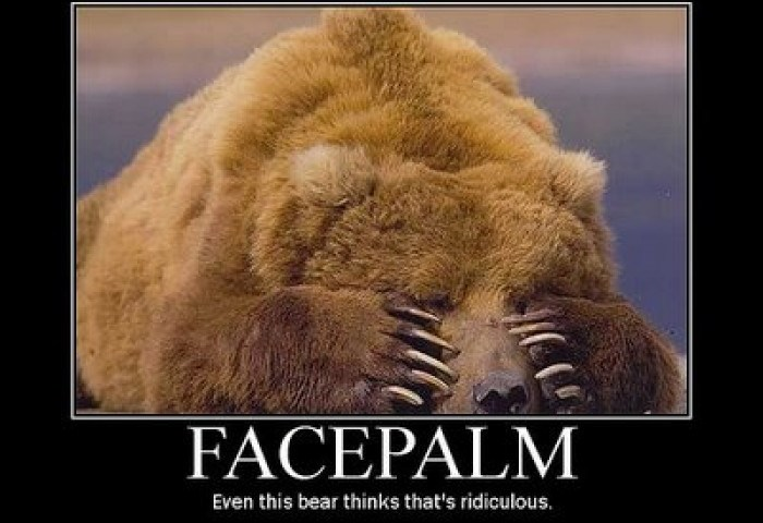 facepalm bear