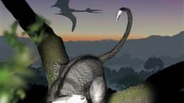 New Report Says Mammals Rise Began Before Dinosaurs Demise