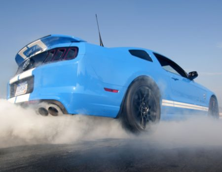 2013 Ford Shelby GT500 is All That  2013 Ford Shelby GT500 is All That  2013 Ford Shelby GT500 is All That  2013 Ford Shelby GT500 is All That  2013 Ford Shelby GT500 is All That  2013 Ford Shelby GT500 is All That