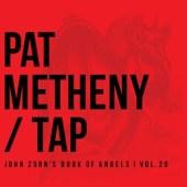 Pat Metheny John Zorn Tap