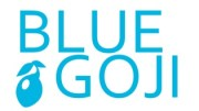 Blue Goji Fitness Game Company Launches - Cardio Exercise Experience Through Immersive Gameplay
