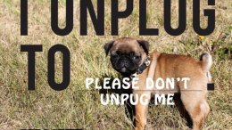 Join the National Day of Unplugging March 6 & 7!