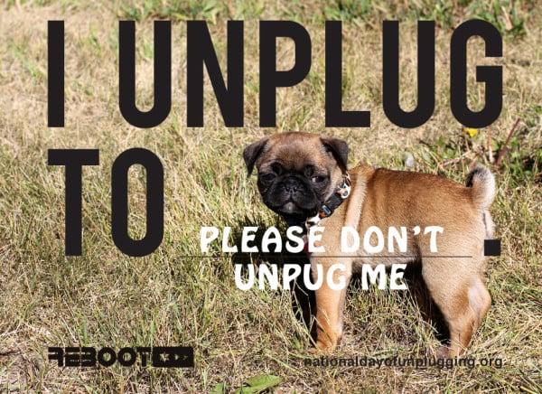 please-dont-unplug-pug-e1362157910214