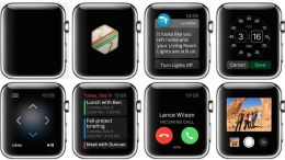 Apple Starts Releasing 3rd Party Apple Watch Apps