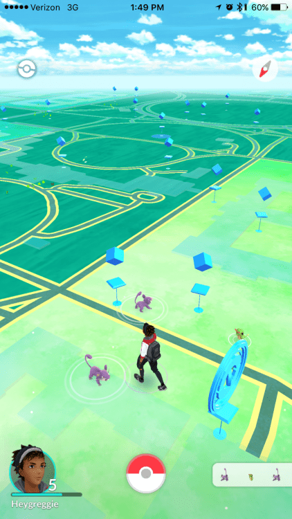 My City Has a Rattata Problem - A Concerned Pokemon Go Player-005