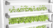 opcom-farms-growbox-and-growwall-7