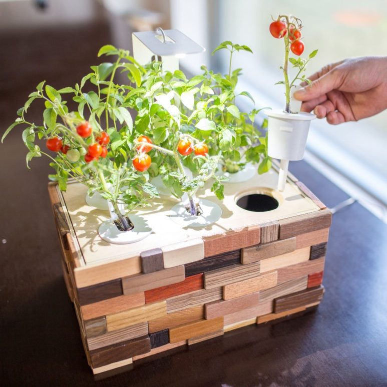 GearDiary Click & Grow Creates an Affordable DIY Indoor Garden