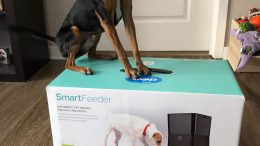 GearDiary Petnet SmartFeeder: Feed Your Four-Legged Friend from Anywhere