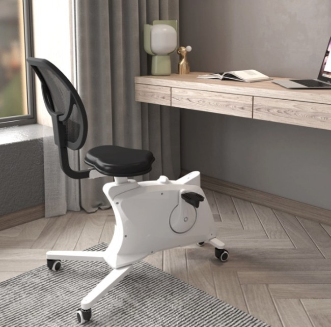 Flexispot Sit2Go 2-in-1 Fitness Chair at a desk