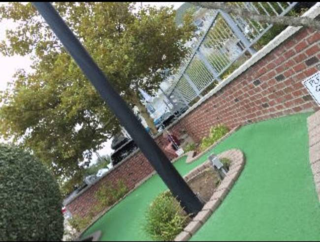 A pole and trees on a green astroturf lawn; photo taken with the Wristcam for Apple Watch.