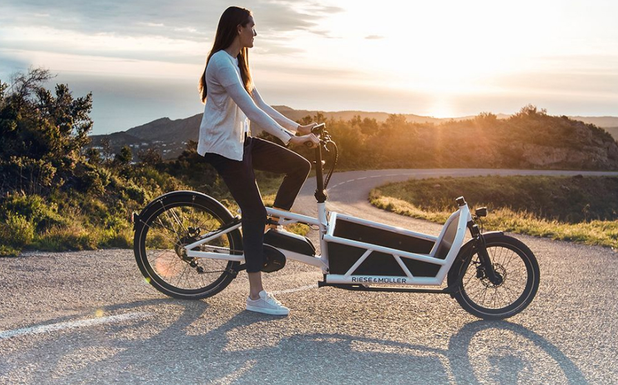 Load E-Cargo Electric Bike by Riese and Muller – The New Family MiniVan