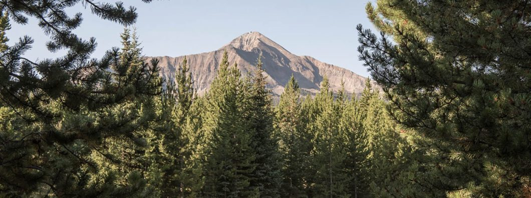 Collective Retreats Offers Luxury Camping Trips From NY to Yellowstone