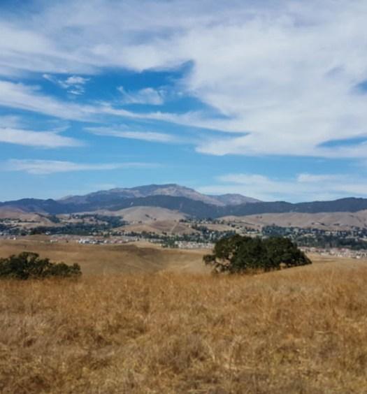 Tassajara Ridge Trail