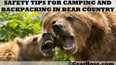 bear safety tips camping