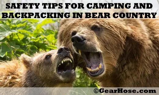 bear safety tips camping