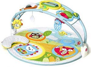 Skip Hop Explore & aby Play Mat Activity Gym