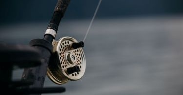 Best Saltwater Fly Reels for The Money