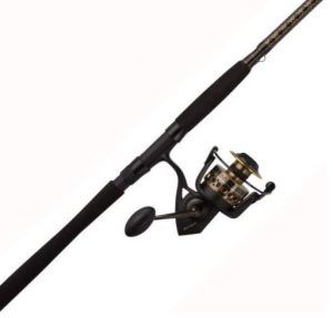 PENN Battle II Spinning Fishing Rod and Reel