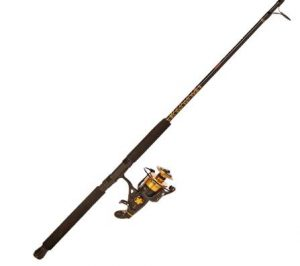 Penn Spinfisher V & VI Spinning Reel & Rod